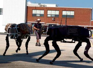 800px-Big_dog_military_robots